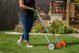 Who Sells Cheap Lawn Mowers