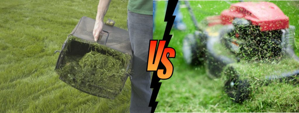 Is It Better To Bag Grass Clippings Or Leave Them On The Grass