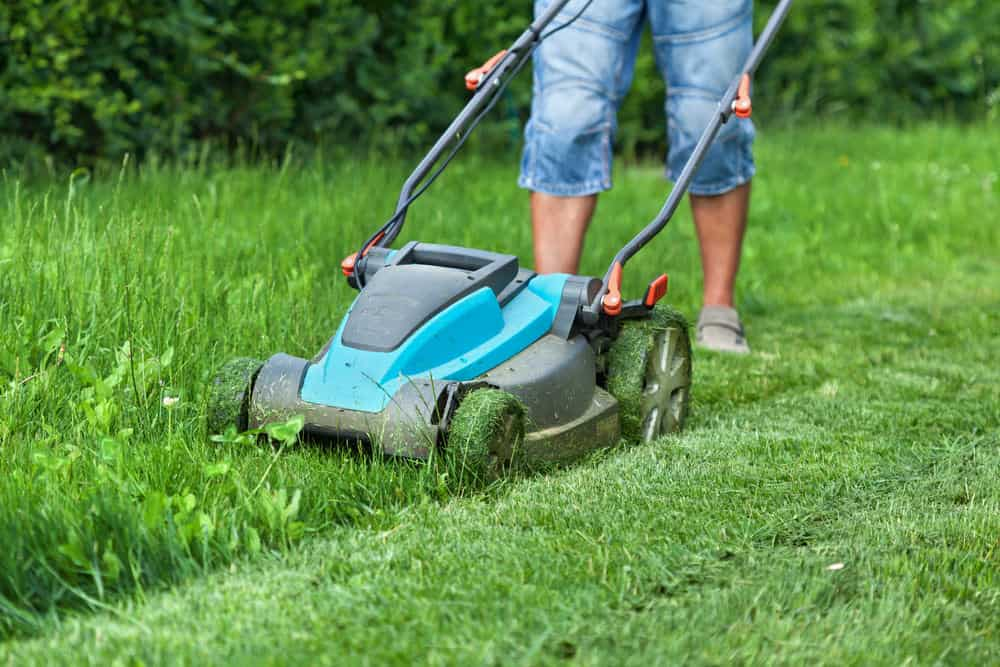 How Does The Electric Lawn Mower Work