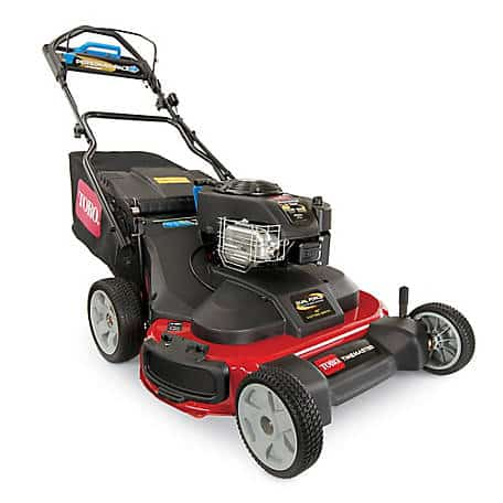 Toro Timemaster 21199 Self-propelled Lawn Mower
