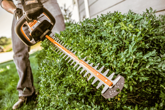 Hedge trimmer A Complete Guideline To Cut Grass Without A Lawnmower