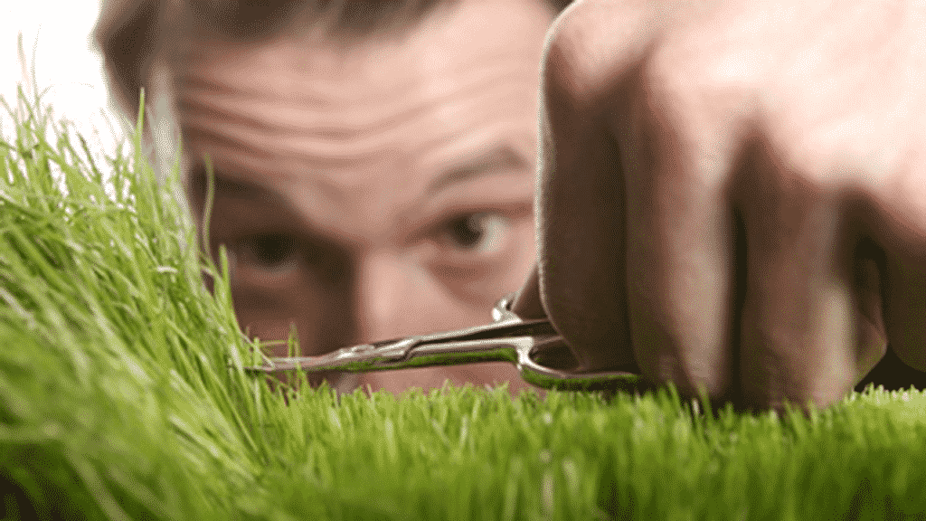 How To Cut Grass Without A Lawnmower